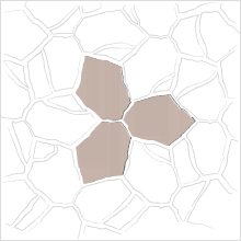 3 STONE TESSELLATED